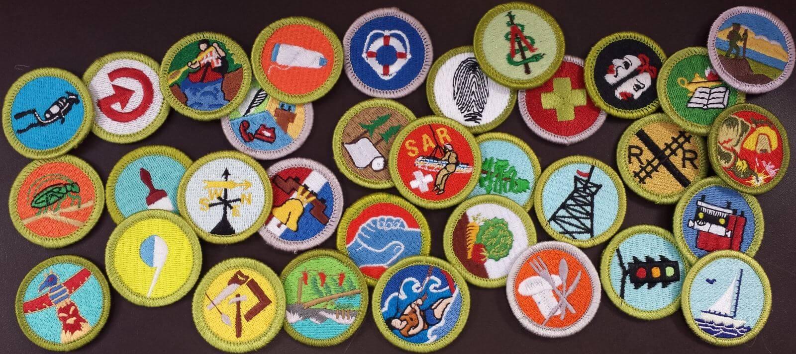 2014-4r-merit-badges